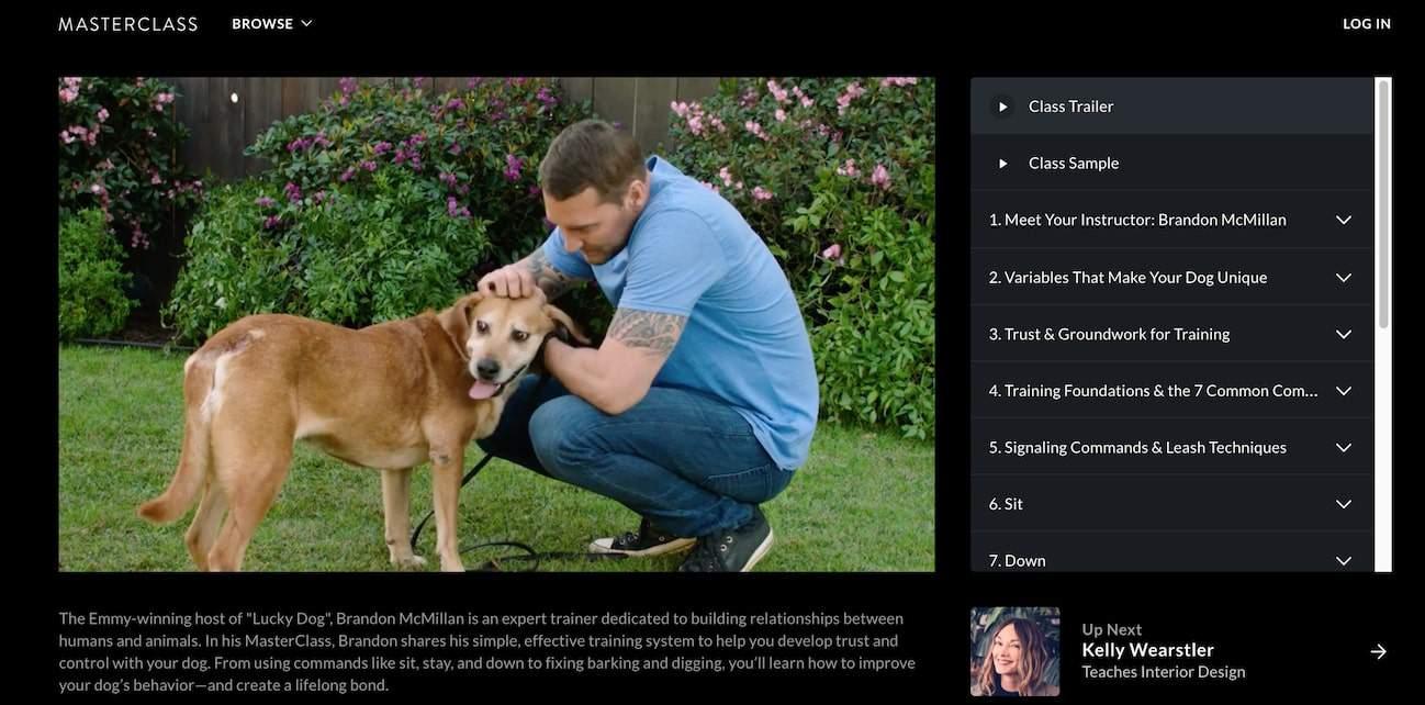 Brandon McMillan Teaches Dog Training