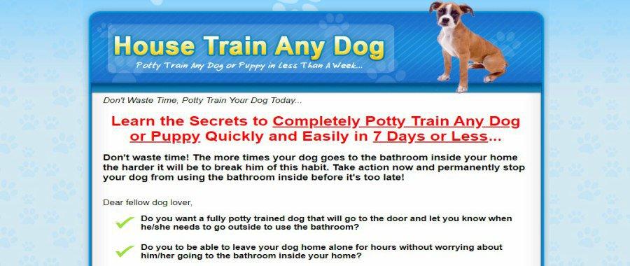 House Train a Dog by Potty Train