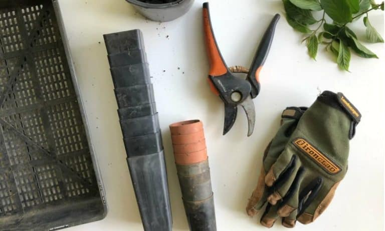 70+ Landscaping Resume Skills For Your CV 2021