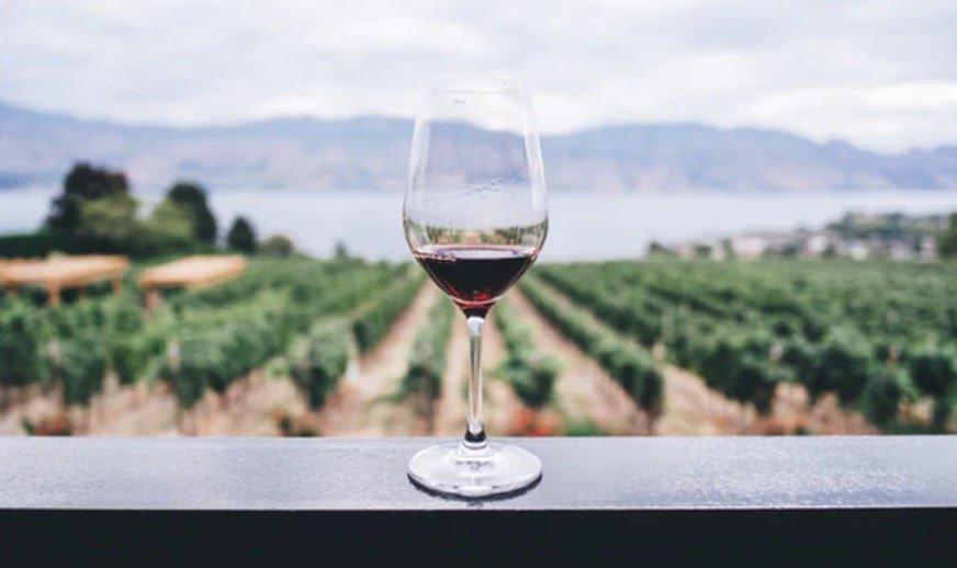 wine making hobby