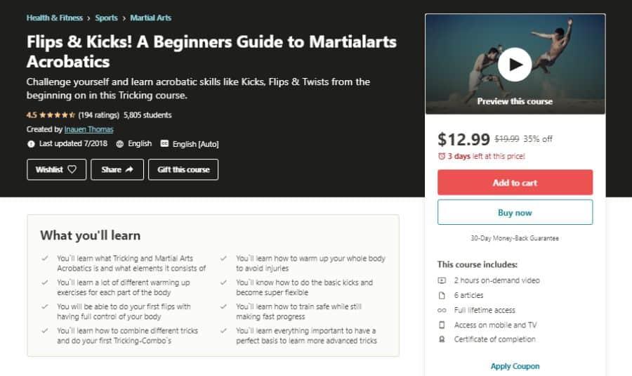 Flips & Kicks! A Beginners Guide to Martial Arts Acrobatics