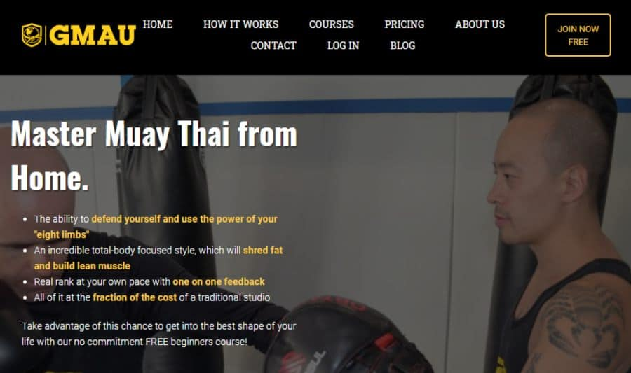 Master Muay Thai from Home