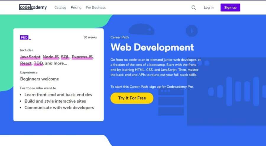 Web Development – Career Path