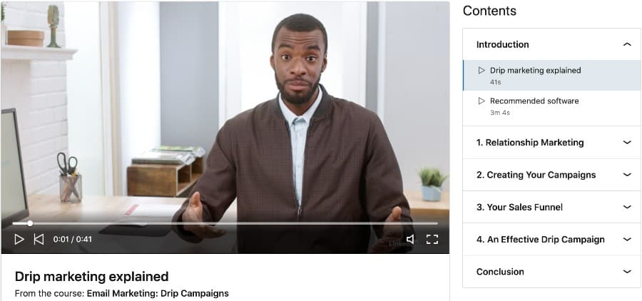 Email Marketing Drip Campaigns (LinkedIn Learning)