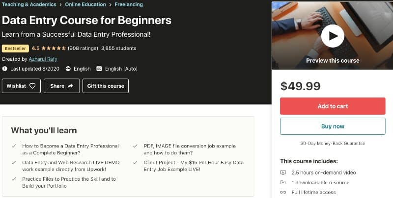 2. Data Entry Course for Beginners (Udemy)