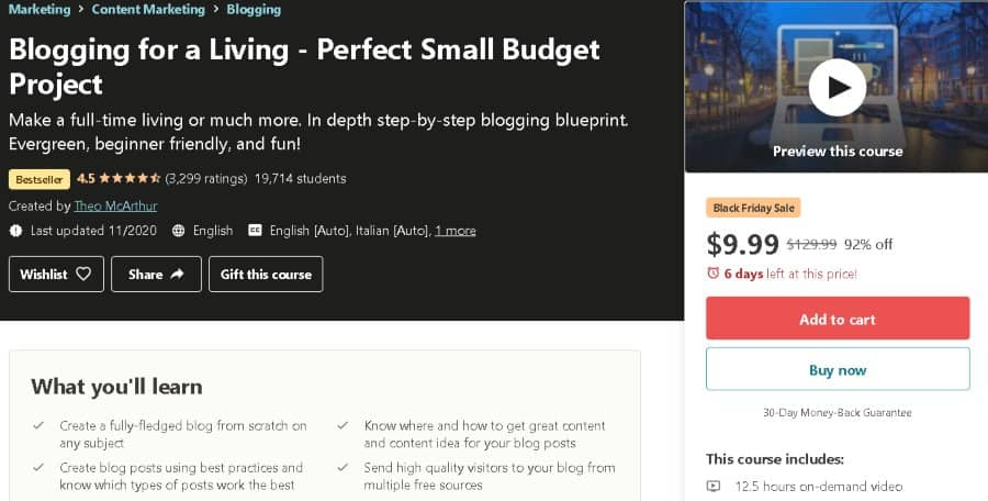 8. Blogging for a Living Perfect Small Budget Project (Udemy)