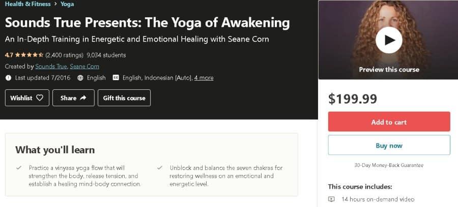 10. Sounds True Presents The Yoga of Awakening (Udemy)