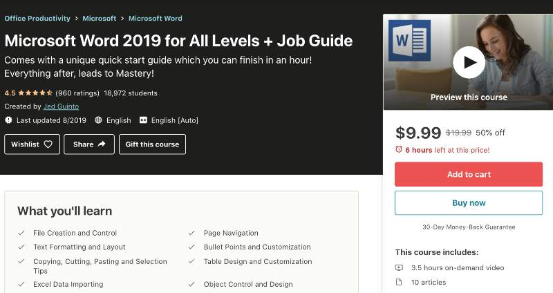 Microsoft Word 2019 for All Levels + Job Guide (Udemy)