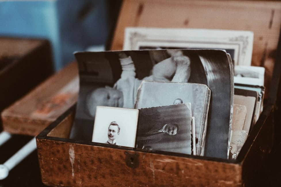 popular hobby genealogy